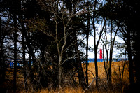 Light House & Land, Muskegon, MI