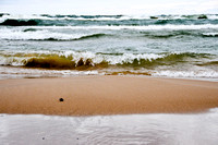 Washed Ashore, Lake Michigan, Muskegon, MI